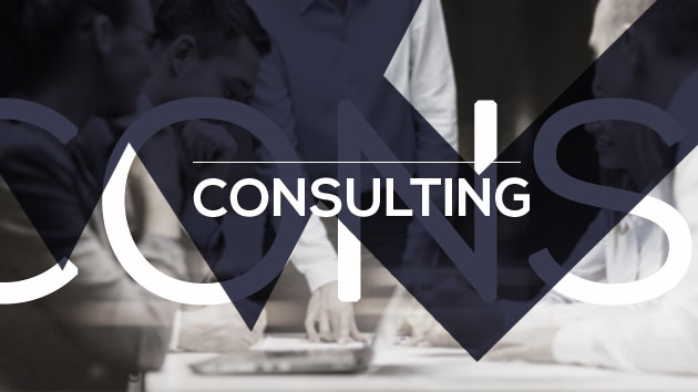 VMC Private Bankers Consulting